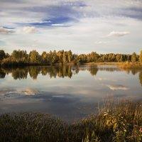 Осень... :: Леся Гуфраева