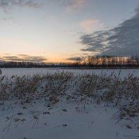 Лебяжье озеро. :: Виктор Евстратов