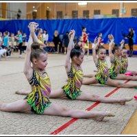 Художественная гимнастика :: Игорь Волков