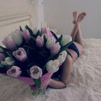 Тюльпаны :: Den41k