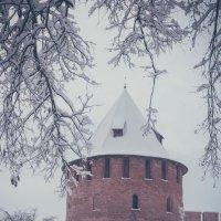 Новгородский кремль зимой :: виктория иванова