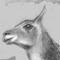Рисунок для внучки Ники...))) Графический планшет. :: Олег Стасенко