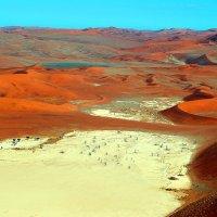И на Марсе будут Яблони цвести. :: Jakob Gardok