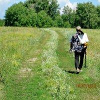 Путь вымощен цветами :: Светлана Рябова-Шатунова