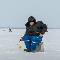 Спортивная рыбалка :: Andrey65