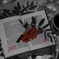 Книжный черно-белый натюрморт :: Кристин Мин