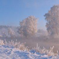 Зимним утром :: Александр Гвоздь