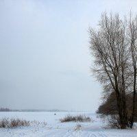 Зима на Волге :: OlegVS S