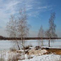 Мартовская весна :: OlegVS S