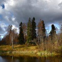Осенний пейзаж :: Oleg S