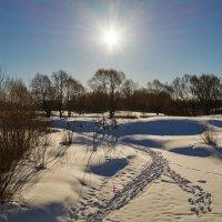 Мартовское солнце 2 :: Андрей Дворников