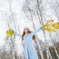 Весна идет... :: Ольга Катько