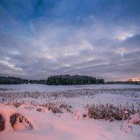 Зимний городок :: Татьяна Афиногенова