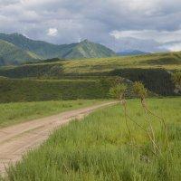 Дорога в Инегень :: Валерий Михмель