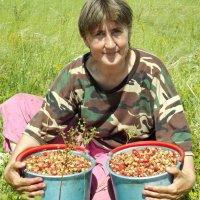 Первая ягода :: Светлана Рябова-Шатунова