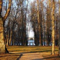Весна в парке. :: Нина Бурченкова.