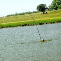 Однажды на рыбалке :: Алла ZALLA