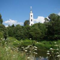Вид на колокольню Николо-Берлюковского монастыря :: Татьяна Георгиевна