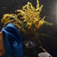 Мимоза - это капельки весны... :: Liliya