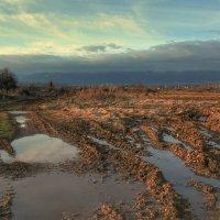 После сильных дождей... :: Вера Катан