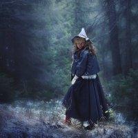 Лесная ведьма :: Елена Круглова