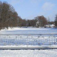 А в парке тишина... :: Валентина Жукова
