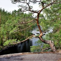 Вид с другого берега пролива Лапинсалми :: Елена Павлова (Смолова)