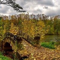 Старый мостик :: Владимир Каравашкин
