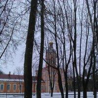 Сквозь деревья. (Александра-Невская Лавра). :: Светлана Калмыкова