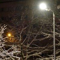 Один под солнцем зимы :: Игорь
