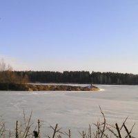 Исскуственное озеро. :: галина