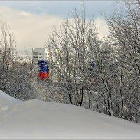 Арктика - наш домЪ :: Кай-8 (Ярослав) Забелин