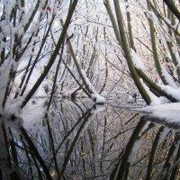Зимняя сказка :: ARFoto Astahova