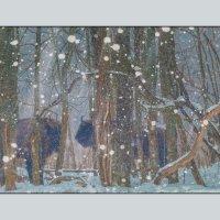 В заповедном лесу. :: Эдуард Сычев