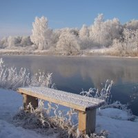 В морозный день у реки :: Татьяна Георгиевна