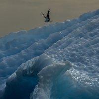 спуск без лыжей :: Георгий А