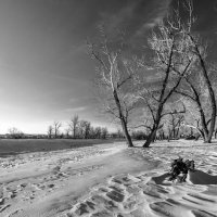 узоры на снегу :: Александр