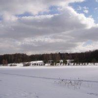 Измайлово Лебедянский пруд :: Анна Воробьева