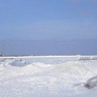 Балтийское море подморозило :: Маргарита Батырева