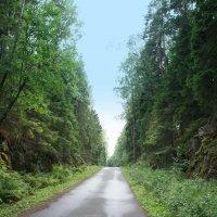 Дорога среди скал на территории детского оздоровительного лагеря «Зеленый остров» :: Елена Павлова (Смолова)