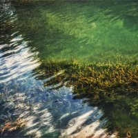 Зелёные воды. :: Вера Катан