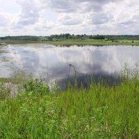 Гляжу в озёра синие..... :: Светлана Z.