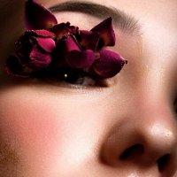 brume rose :: Natalia Dikova