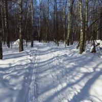 Март - месяц зимний :: Андрей Лукьянов