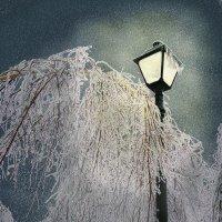 Ледяной свет. :: actualis