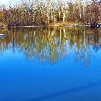 Река. :: vodonos241