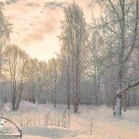Утренняя безмятежность :: Виктор Заморков