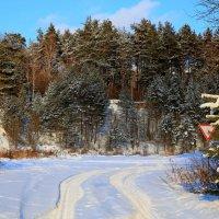 зима :: Владимир Вдовин