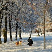 Внутри Зимней Сказки... :: Sergey Gordoff