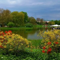 Весна в парке цветов :: Nina Yudicheva